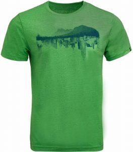 Pánské triko Alpine Pro MOTIQ, K Sporting